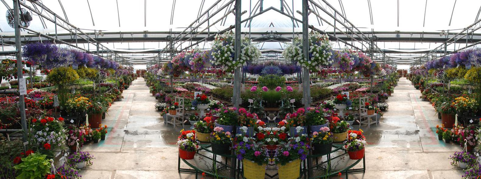 Piechniks Greenhouse & Garden Gate