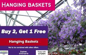 hangingbasket