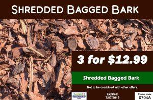 shreddedbark